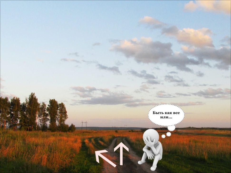 Дачное поле