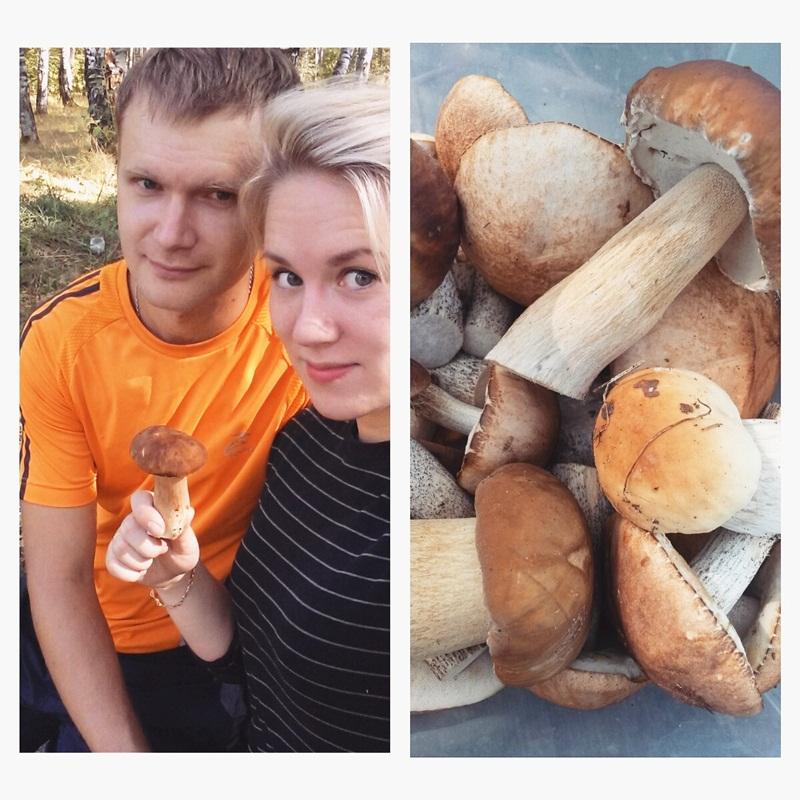 мы с грибами